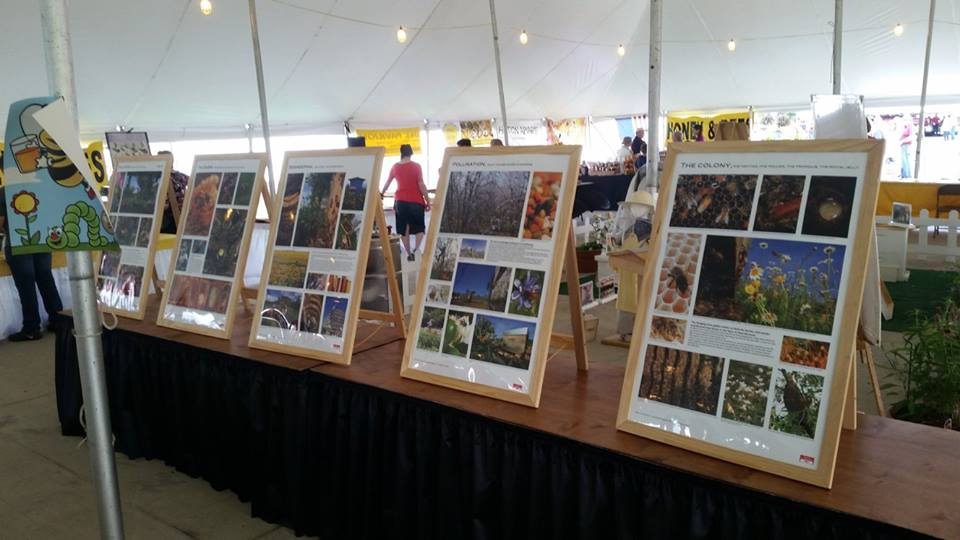 Beekeeping displays at the 2017 State Fair.