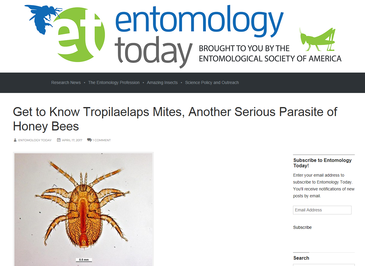 ENTOMOLOGY TODAY TROPILAELAPS MITES